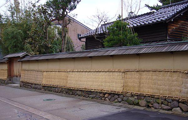 yukigakoi061211.jpg